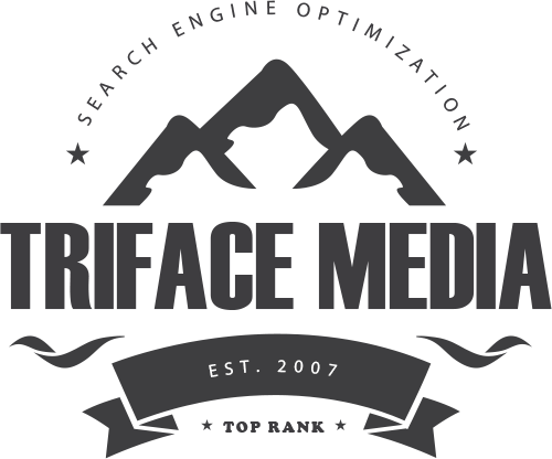 Detroit SEO Pro | Top SEO Detroit | Triface Media SEO